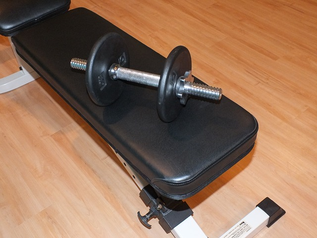 halteres sur un banc de musculation